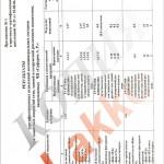 Протокол-испытаний-полимерных-составо-стр2
